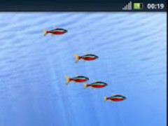 Fishes Live Wallpaper 1.0.2 Screenshot
