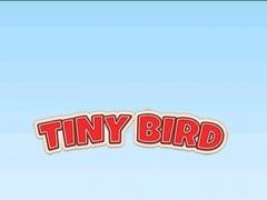 Flappy Tiny Bird - Fun Game of Bird Fly 1.0.2 Screenshot
