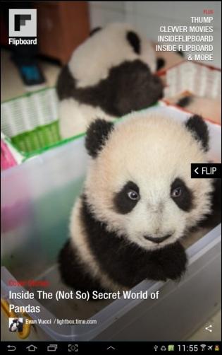 Flipboard - Panda!