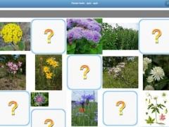 Flower beds - quiz 1.0 Screenshot