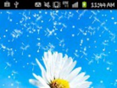 Flower on the Blue sky 1.0 Screenshot