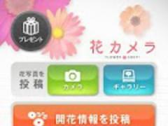 Flower Shot 4.0.1 Screenshot