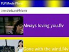 FLV&WMV Movie Player 1.2 Screenshot