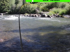 Fly Fishing Simulator HD 5.040 Screenshot