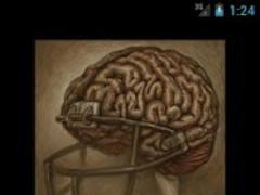 Football & Concussions 1.0 Screenshot