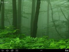 Forest Live Wallpaper  Screenshot