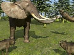 Forest Wild Life Simulator 3D 1.1 Screenshot
