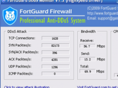 FortGuard DDoS Attack Monitor 1.3 Screenshot