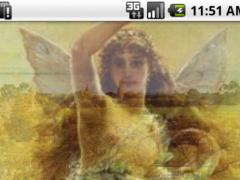 Fortune wallpaper brings luck 3.0 Screenshot