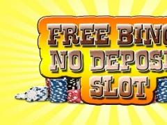 Free Bingo No Deposit Slot 1.0 Screenshot