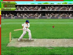 Free Hit Cricket 2.4 Screenshot