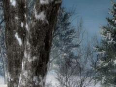 free live snowflake wallpaper 1.1 Screenshot