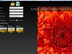 Free Online Protecting an image 1.0 Screenshot