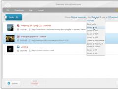 Freemake Video Downloader 3.7.5 Screenshot