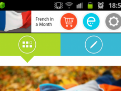 French in a Month Free 1.27 Screenshot