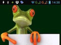 Frog reminder 1.2 Screenshot