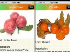 Fruits Bible 6.0 Screenshot