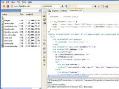 FTPEditor 4.0.5 Screenshot