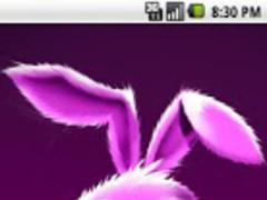 Funny Bunny Live Wallpaper 1.0 Screenshot
