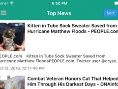 Funny Cat Pro - News, Videos & Cute Cat Pictures 1.0 Screenshot