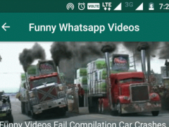 Funny Videos For Whatsapp Free 2.1 Screenshot