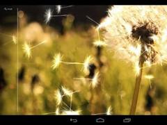 Galaxy Dandelion 3.0 LWP 5.0.0 Screenshot