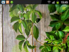 Galaxy S4 Soft LWP Style 1.0 Screenshot