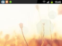 Galaxy S4 Summer Wallpaper 1.0 Screenshot