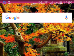Garden Wallpaper 1.1.1 Screenshot