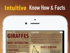 Giraffe 101: Facts and News 1.0 Screenshot