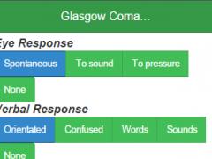 Glasgow Coma Scale Score 1.100 Screenshot