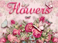 GO SMS PRO FLOWERS THEME 1.0.61 Screenshot