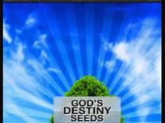 God's Destiny Seeds 2.2 Screenshot