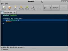 GoInEdit  Screenshot
