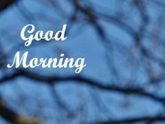 Good Morning Images 3 1.03 Screenshot