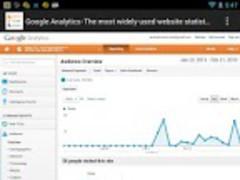 Google Analytics and Adsense 1.1 Screenshot