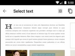 Google PDF Viewer  Screenshot