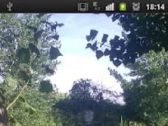 Gpv Photo Frame Gallery Free 3.0 Screenshot