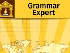 Grammar Expert: Synonyms, Antonyms and Homonyms 3.0 Screenshot