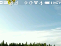 Grass Video Live Wallpaper 1.0 Screenshot