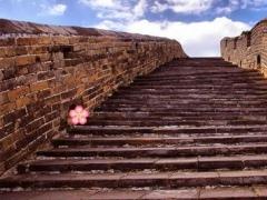 Great Wall Treasure Escape - Lost Tour&Magic Runner 1.0.1 Screenshot