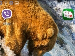 Grizzly SHAKE And Change LWP 1.00 Screenshot