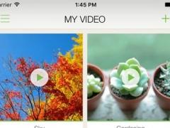 GROVIE 2.0.1 Screenshot