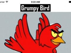 Grumpy Bird- Avoid the Box 1.0 Screenshot