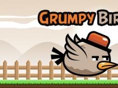 Grumpy Bird - Endless Arcade Flyer - PRO 1.0 Screenshot