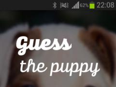 Guess the puppy 1.0 Screenshot