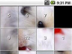 Hamster Puzzles 1.5 Screenshot