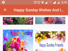 Happy Sunday Wishes And Images 10 Free Download