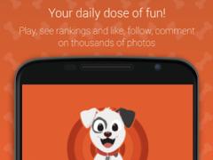 Hashdog - Dog's social network 2.6.6 Screenshot