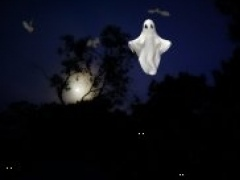 Haunted Woods Screensaver 01 Screenshot